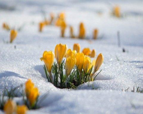 Сніг вже близько: синоптик розповів про дивну весну в Україні