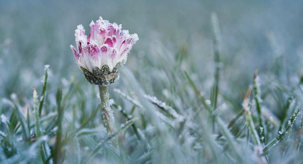 До України йдуть сніг і морози – синоптик про те, коли все ж почнеться весна