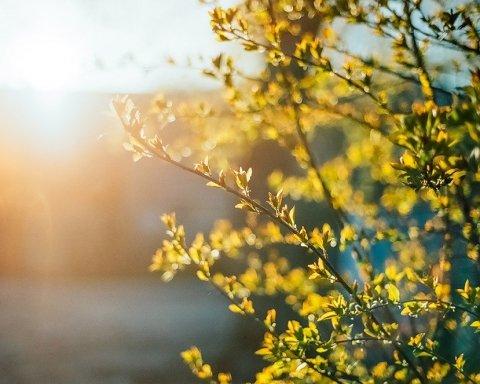 Ще не зараз: синоптик розповів, коли до України прийде справжня весна