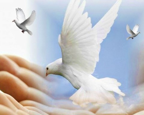 Прощена неділя 2021: вірші про прощення, листівки і привітання