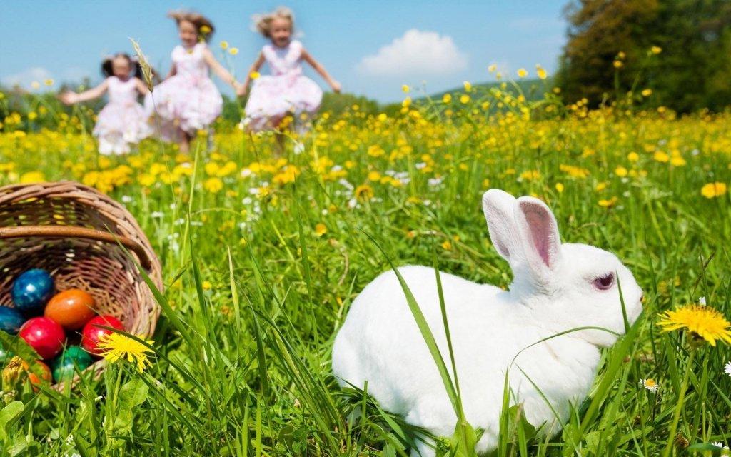 На Великдень будуть дощі: синоптик озвучив цікавий прогноз на весну в Україні