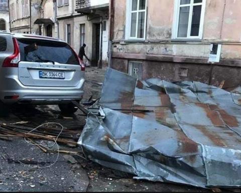 Смертельная непогода в Украине: дерево убило молодую женщину