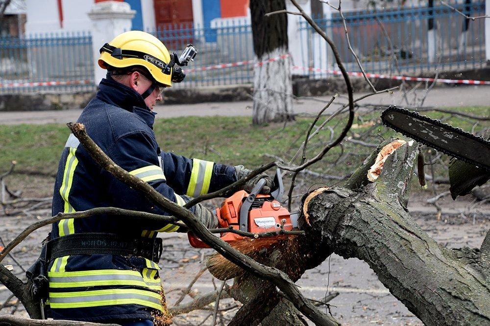 У Миколаєві дерево впало на маршрутку, постраждали діти: фото і відео з місця НП