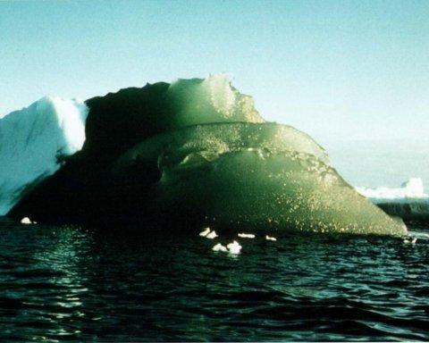 Розгадано таємницю Антарктиди: подробиці відкриття