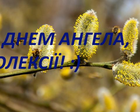 Поздравления с Днем ангела Алексея: красивые пожелания и яркие открытки