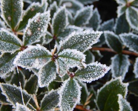 В Украину вернутся морозы со снегом: синоптик озвучила дату