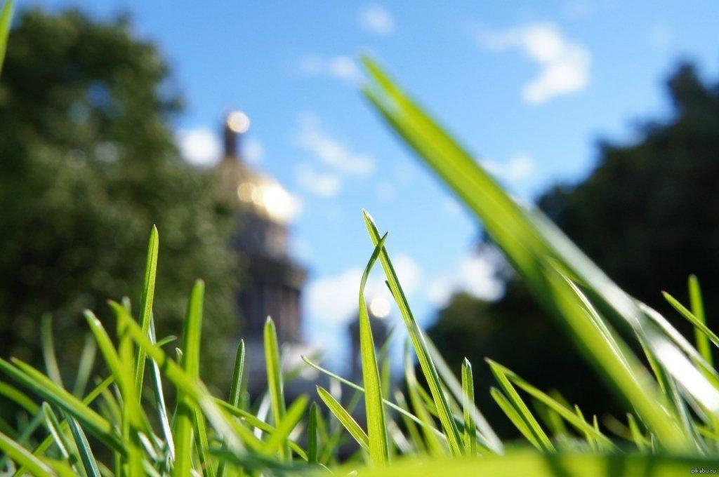 Погода на Пасху и майские: синоптик рассказал, что может испортить украинцам праздники