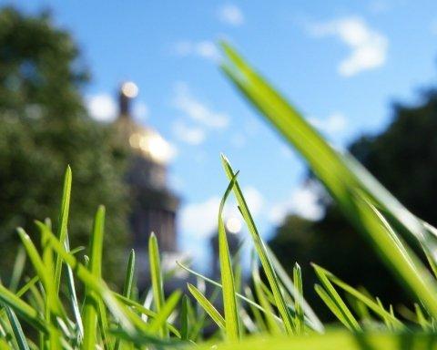 До України йде весняна спека: синоптики порадували прогнозом і назвали дати