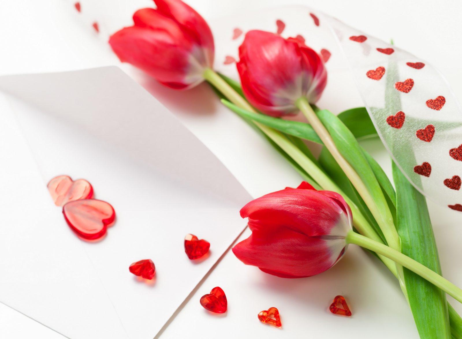 Поздравления с 8 марта: лучшие пожелания и яркие открытки