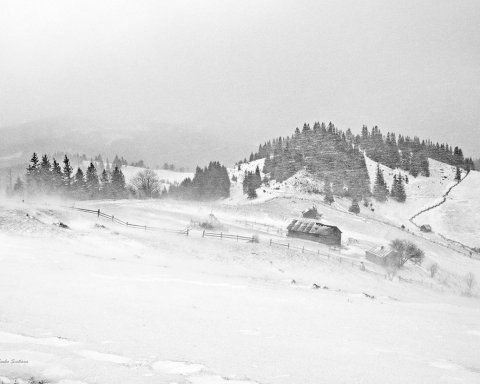 Снігопади та хуртовини: де в Україні буде погана погода