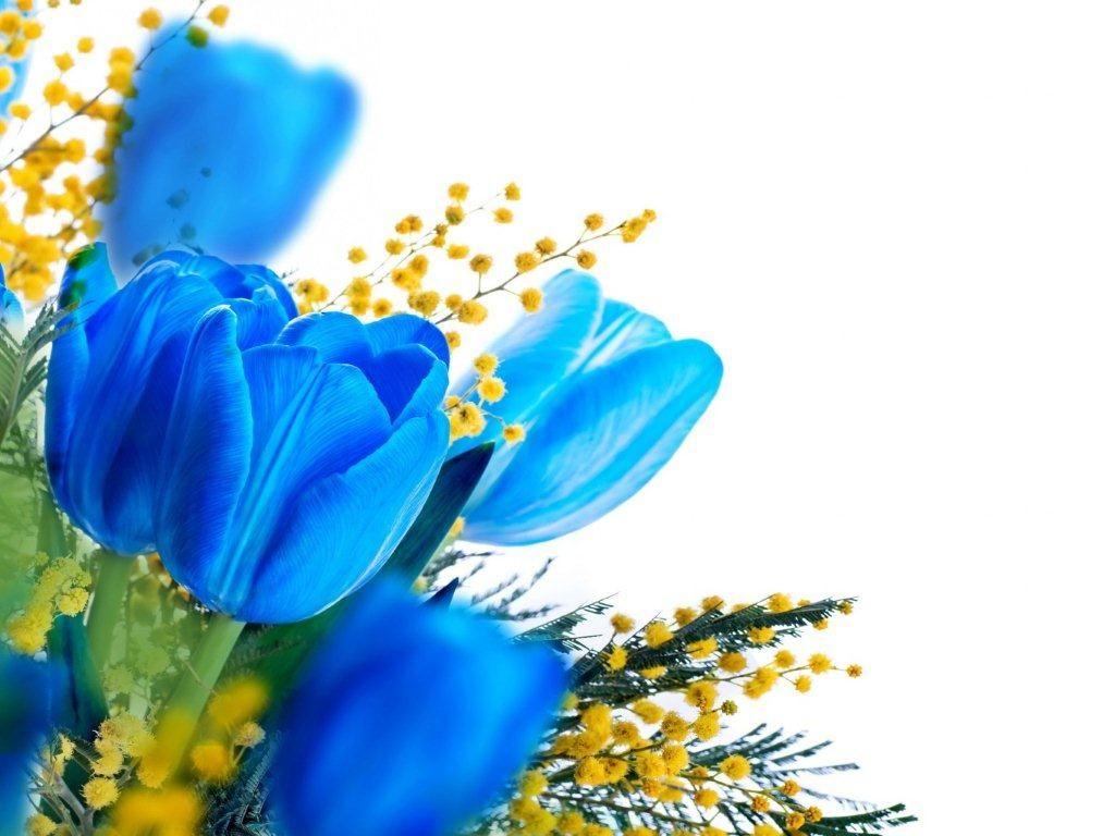С 8 марта открытка синяя