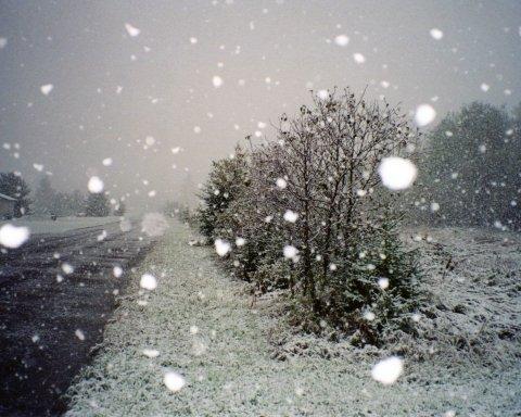 Ще одне українське місто засипало снігом: опубліковано відео
