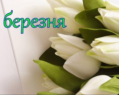8 березня: красиві привітання і яскраві листівки