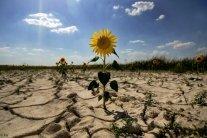 Юг Украины станет пустыней: синоптик озвучил апокалиптический прогноз