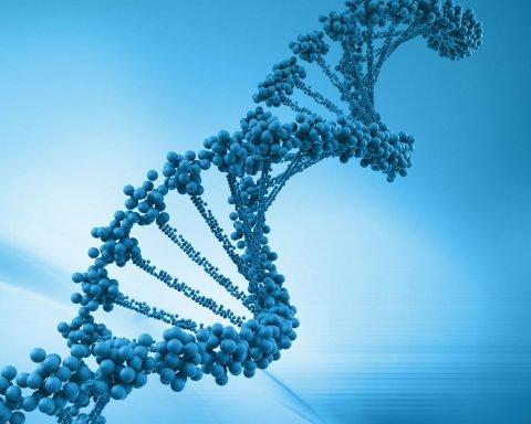 Обнаружен ген красоты: появилось интересное заявление ученых