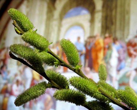 Вербна неділя: священик дав кілька важливих порад перед святом