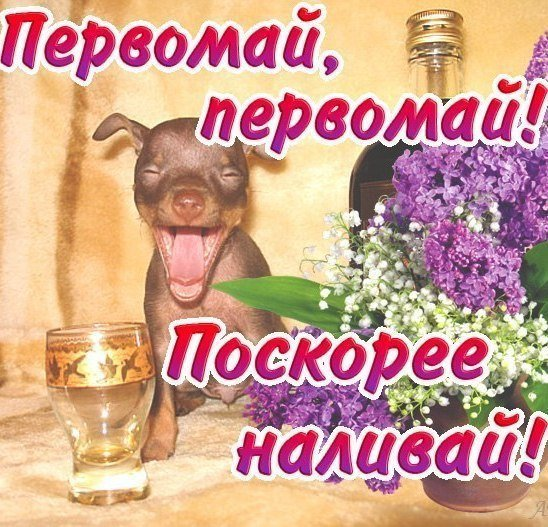 1 травня: жартівливі поздоровлення та прикольні листівки