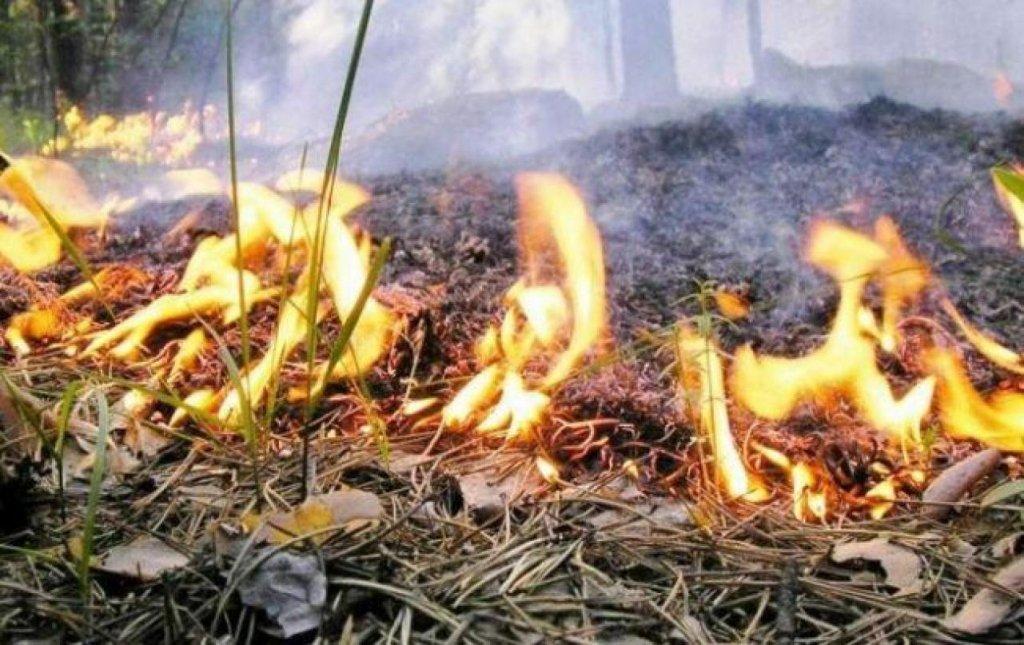 Украину предупредили об опасности на Пасху: где самая большая угроза