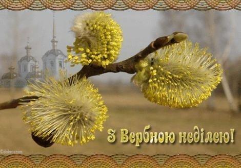 Вербна неділя 2021: красиві листівки та короткі привітання зі святом
