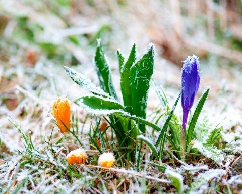 """Синоптик дала Україні """"холодний"""" прогноз погоди і назвала дату потепління"""