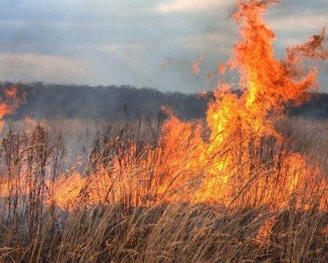 На Полтавщині палає сміттєзвалище: моторошні кадри з місця НП