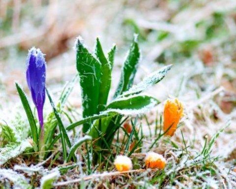 Сніг та морози: з'явився прогноз погоди до кінця березня в Україні