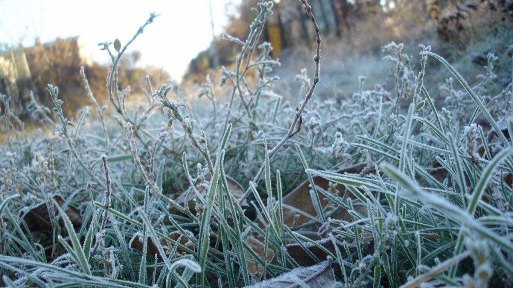 Заморозки до -5: где ожидать значительного похолодания