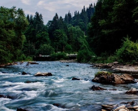 Авто с туристами упало в реку: возле Ивано-Франковска произошло смертельное ДТП