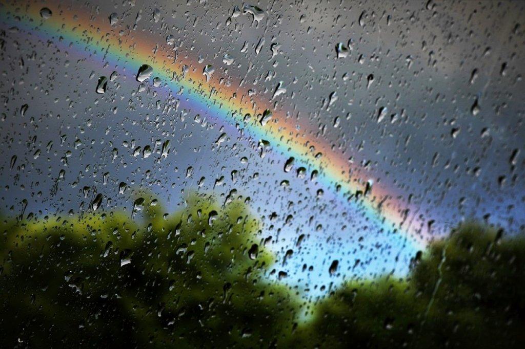 Дожди и похолодание: в Украине резко изменится погода