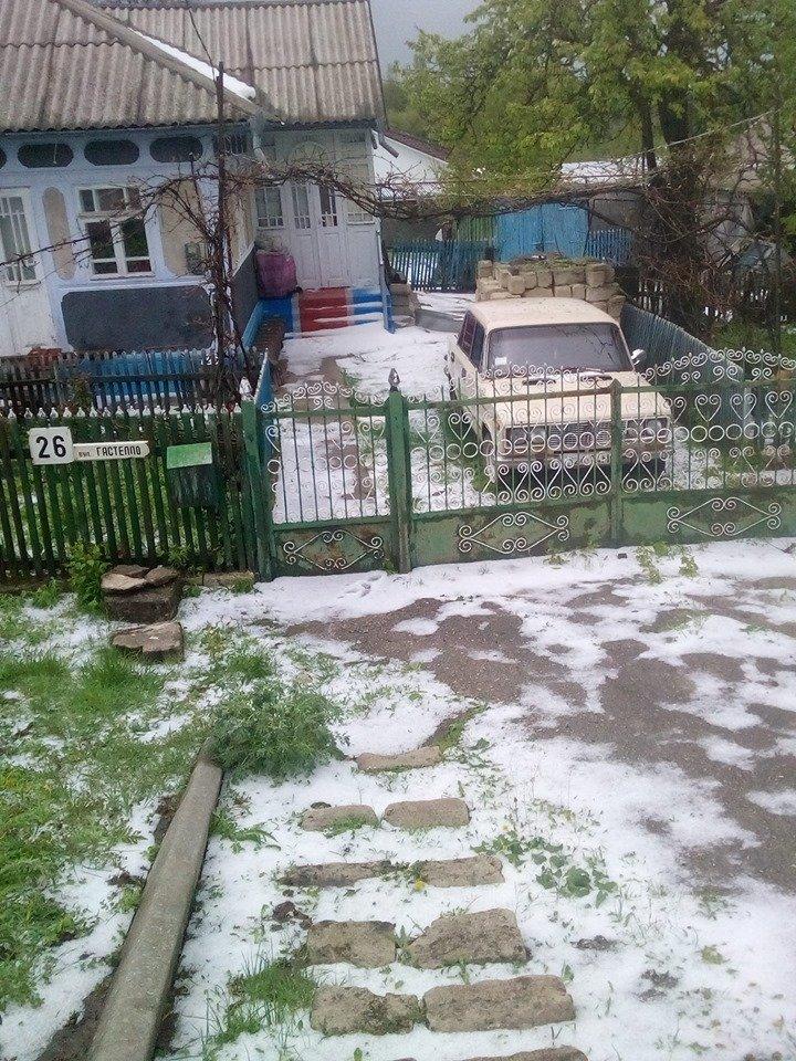 Украину 1 мая засыпало снегом: появились впечатляющие фото