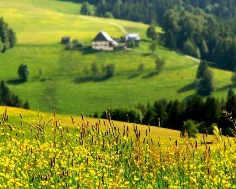 Украину ждет аномальное лето: синоптик озвучил интересный прогноз
