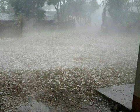 Град размером с яйцо: опубликованы фото последствий стихии на Закарпатье