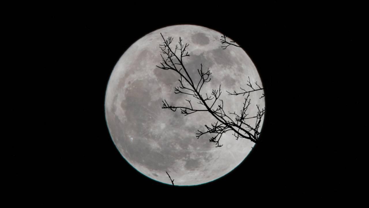 Там находятся драгоценные металлы: геологи раскрыли большой секрет Луны