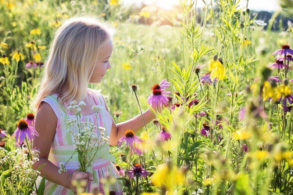 Аномальної спеки не буде: синоптики дали прогноз погоди на літо