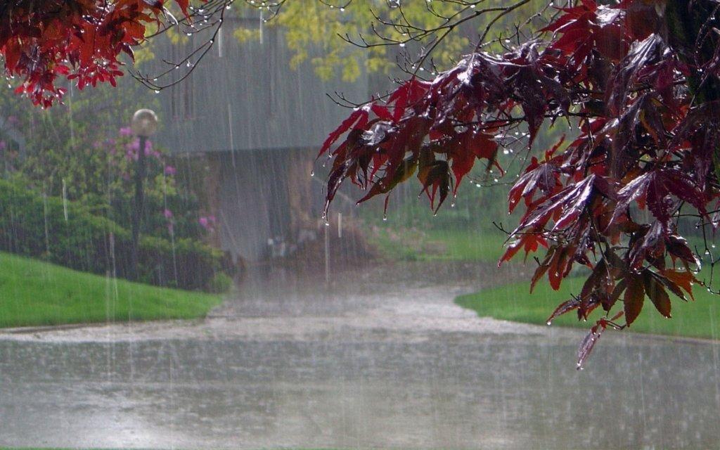 Дощі не припиняться: де буде дуже погана погода 2 червня
