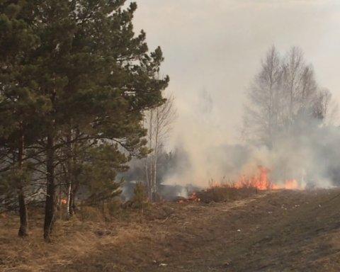 Спасатели предупреждают: где в Украине самый высокий уровень пожарной опасности