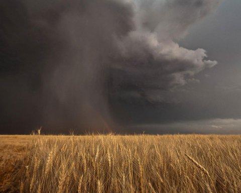 На Украину надвигается гроза: каким областям не повезло