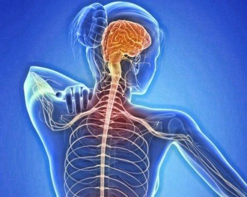 Супрун рассказала, как выявить и лечить рассеянный склероз