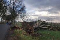 Мощный циклон принесет в Украину сильный ветер и ливни