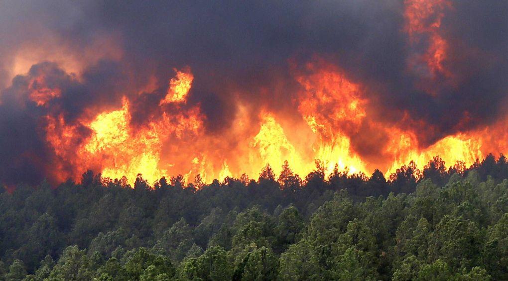 Адский пожар в Сибири начала тушить армия РФ: что там происходит