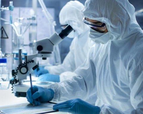 Впервые в истории нашли природные лекарства против рака
