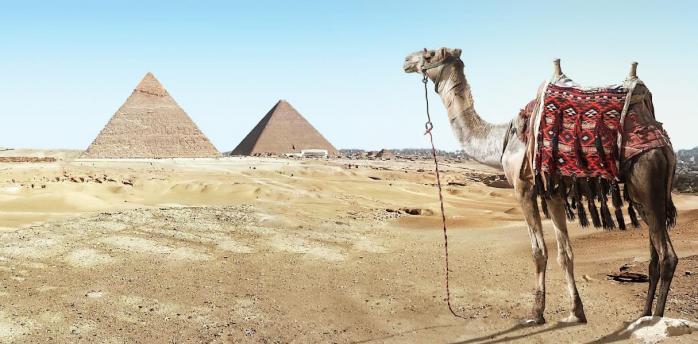 Ветер из Сахары несет в Европу экстремальную жару
