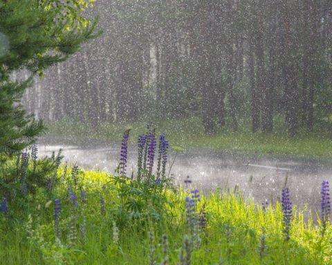 Погода в Украине: где сегодня пройдут дожди со шквалом
