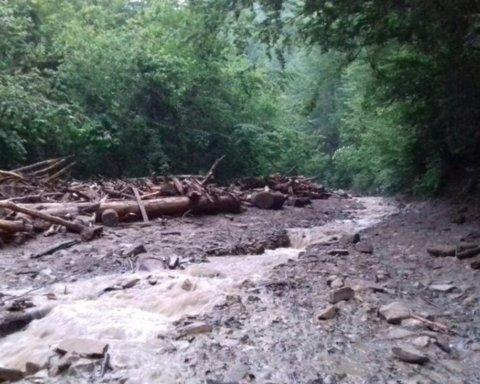Появились первые фото с места гибели лесников в Закарпатской области