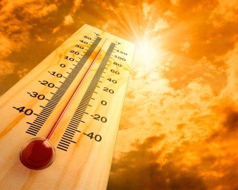 Во Франции рекордная жара за всю историю наблюдений: подробности