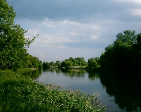 Вылив химикатов в реку Рось: стало известно о тревожных последствиях