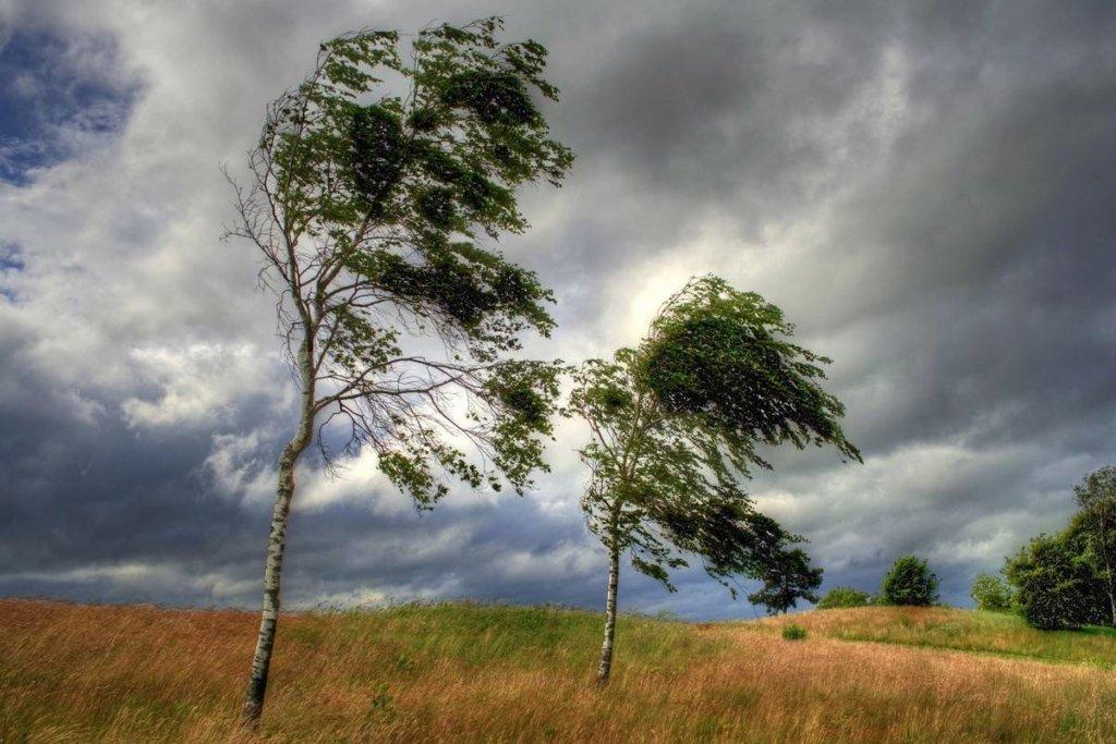 Погода 5 травня: в Україні обіцяють дощі і грози
