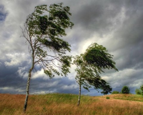 На Украину обрушится сильный ветер: прогноз погоды на 13 апреля
