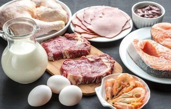 Білкова дієта дозволить скинути 5 кілограмів: що треба їсти