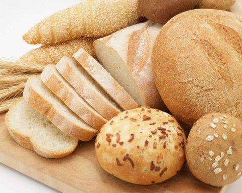 Під Києвом викинули на смітник тонну хліба: фотофакт